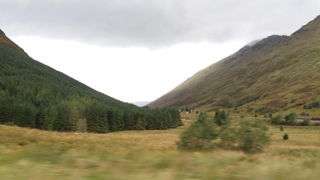 15 landscape